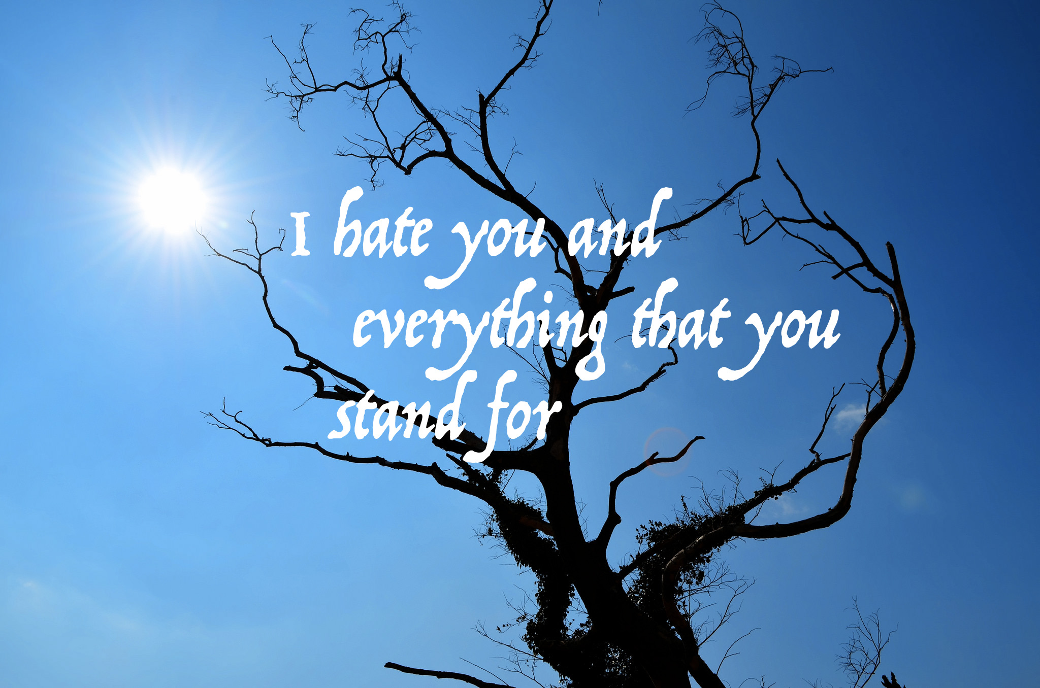 I hate you and everything that you stand for